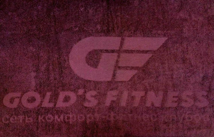 Gold Fitness